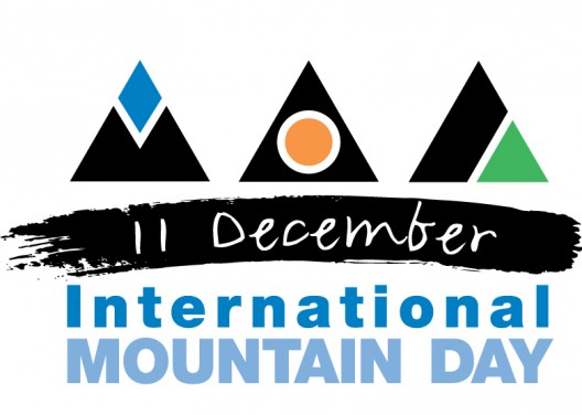 Uluslararası Dağ Günü